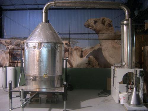 bowellness-distiller